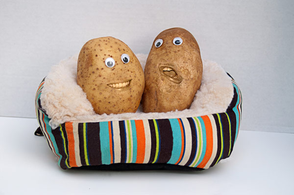 couch potato - pew potato